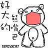 ::卡比大熊::